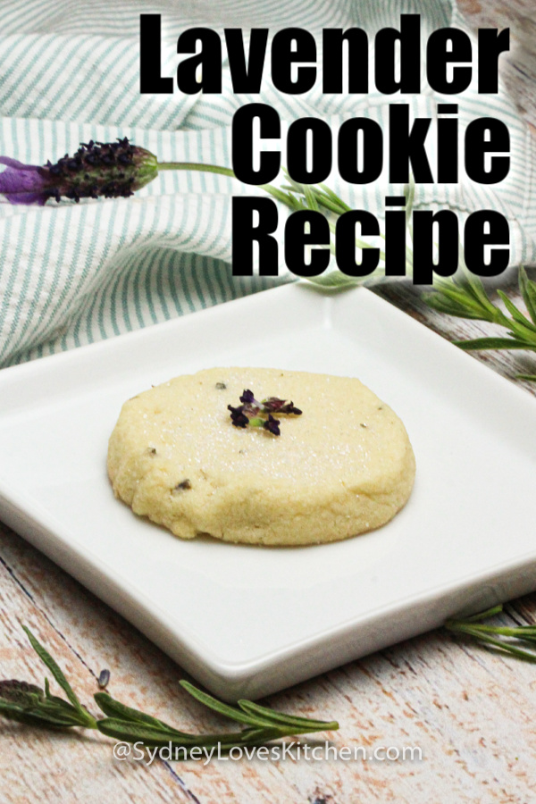 One single lavender cookie on a white plate.